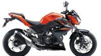 Kawasaki Z250 akan Tampil dengan Warna Baru dari Pendahulunya
